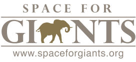 Space for giants