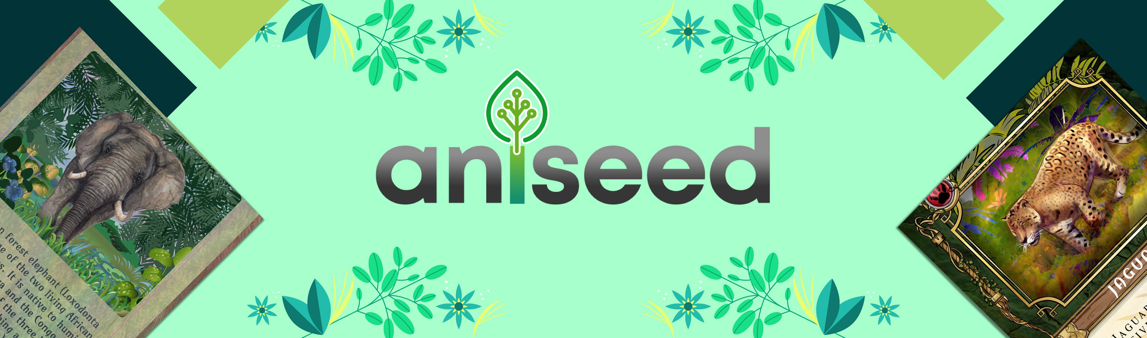 The Aniseed NFT Marketplace: Benefiting Charities and NGO's